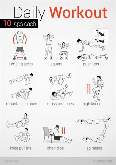 No equipment easy workout   Easy daily workouts, Easy